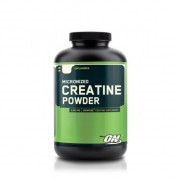 Креатин моногидрат Optimum Nutrition Creatine Powder  (600 г)